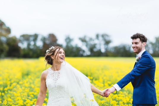 Weddings in Canola.jpg