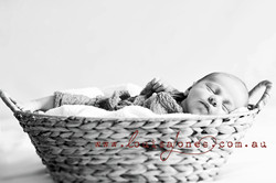 Newborn Baby Photography Melbourne