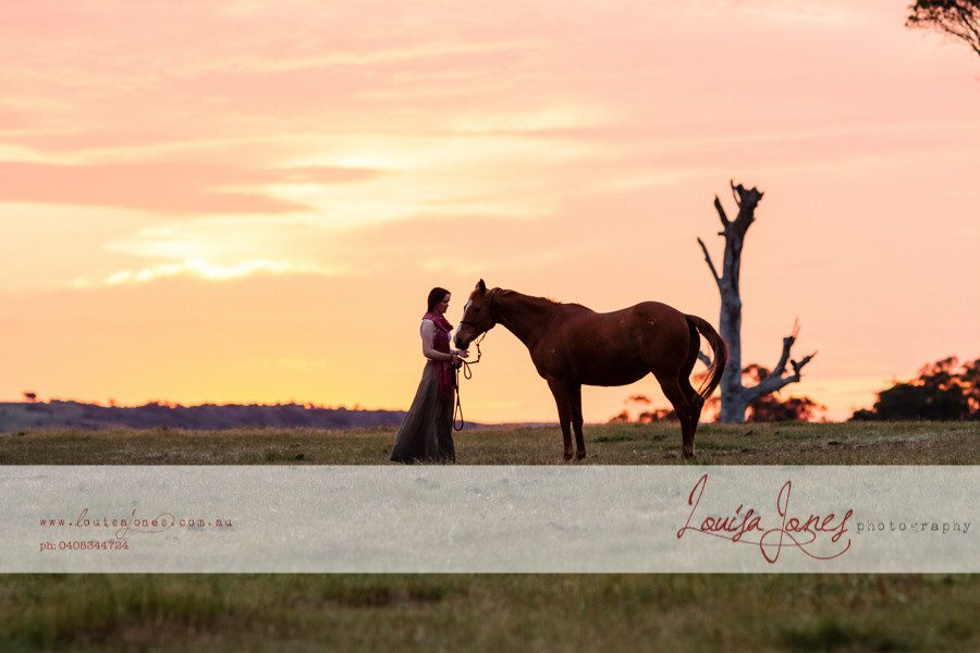 Horse Photography Bacchus Marsh 18.jpg
