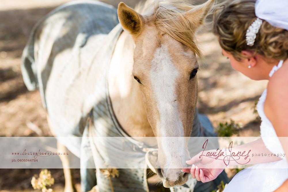 ljp bc5813 Geelong Wedding Photography.jpg