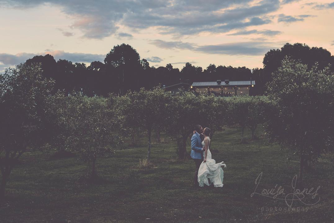 ljp merne wedding.jpg
