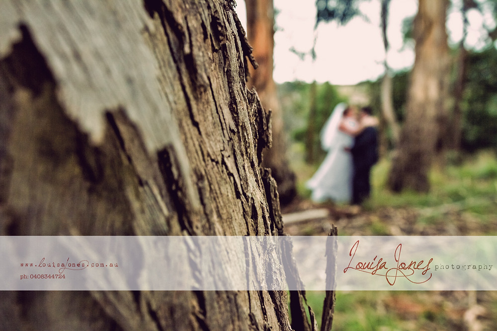 ljp bc6663 v1 Geelong Wedding Photography.jpg