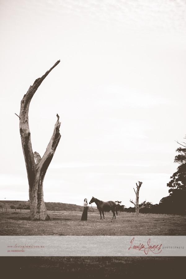 Horse Photography Bacchus Marsh 10.jpg