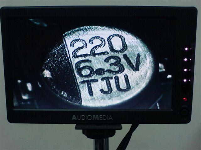 Immagine presa dal microscopio