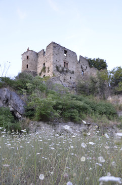 Abandoned Castles.