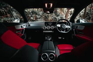 Mercedes9 copy.jpg
