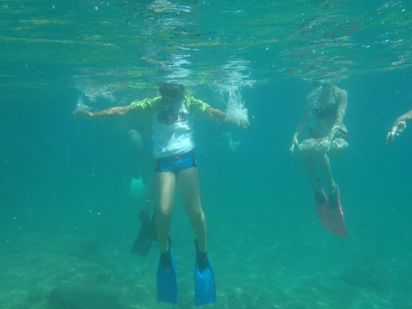 Families underwater snorkeling