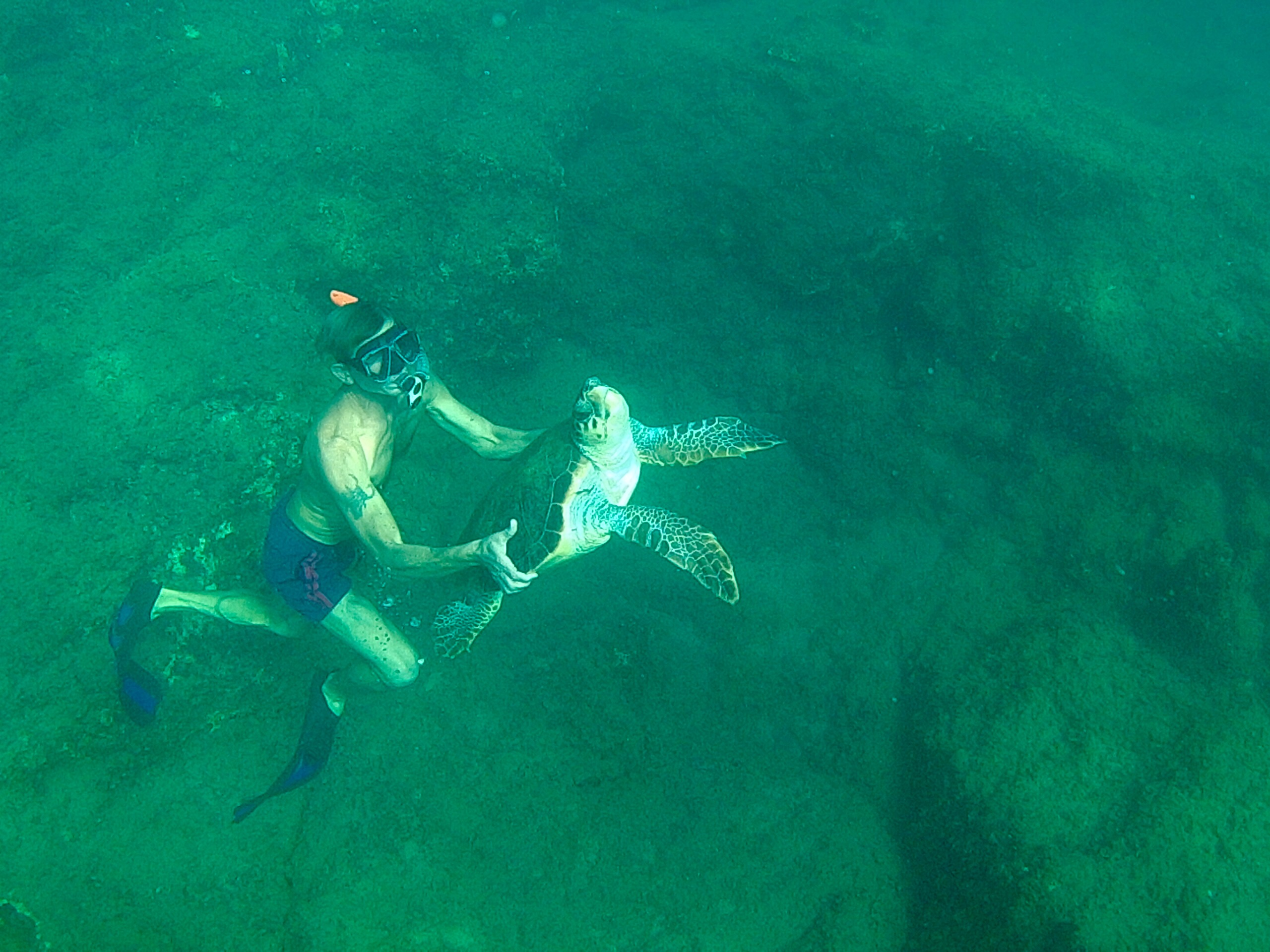 Man Snorkeling with Sea Turtle