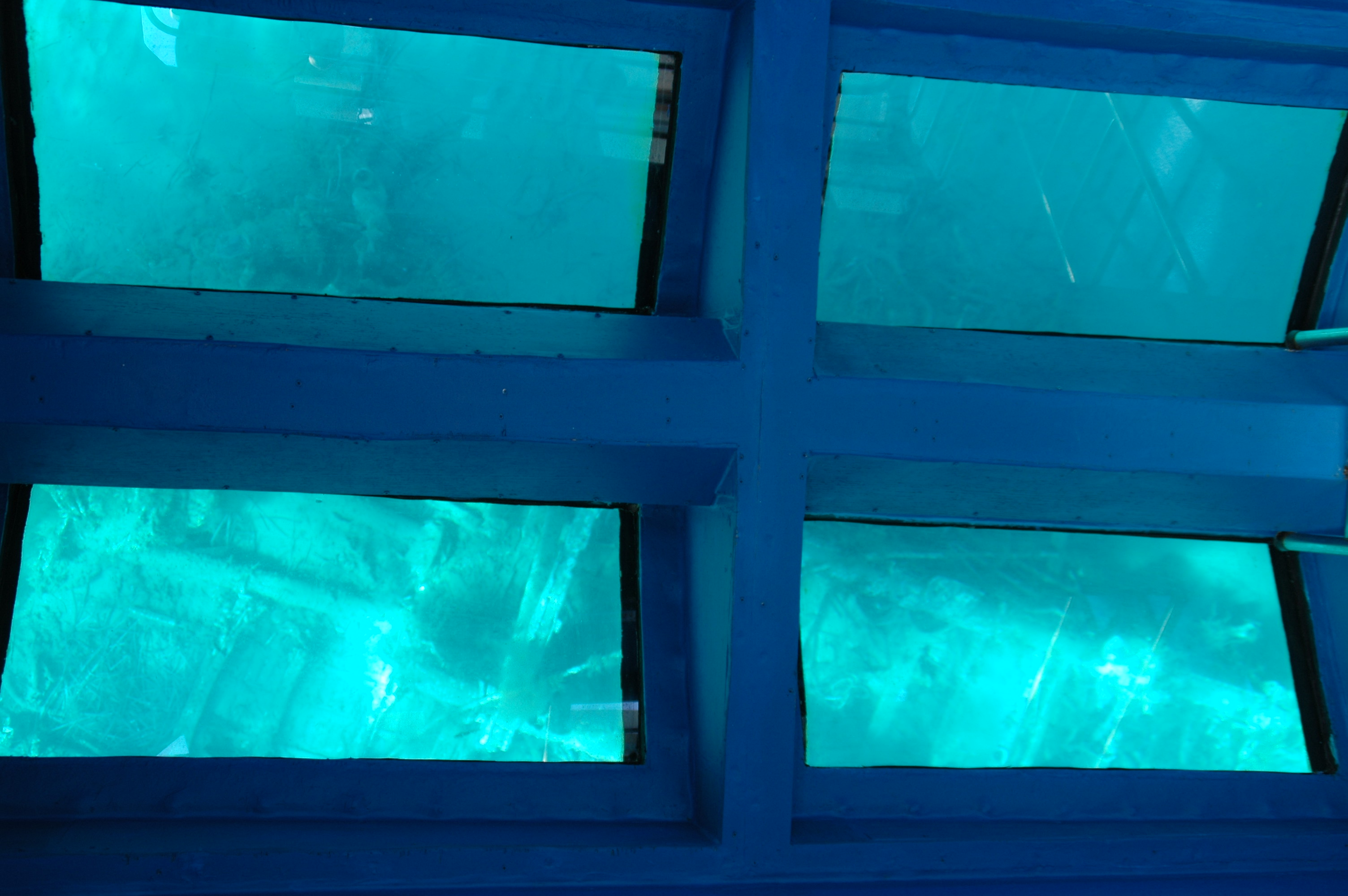 Windows showing view of underwater