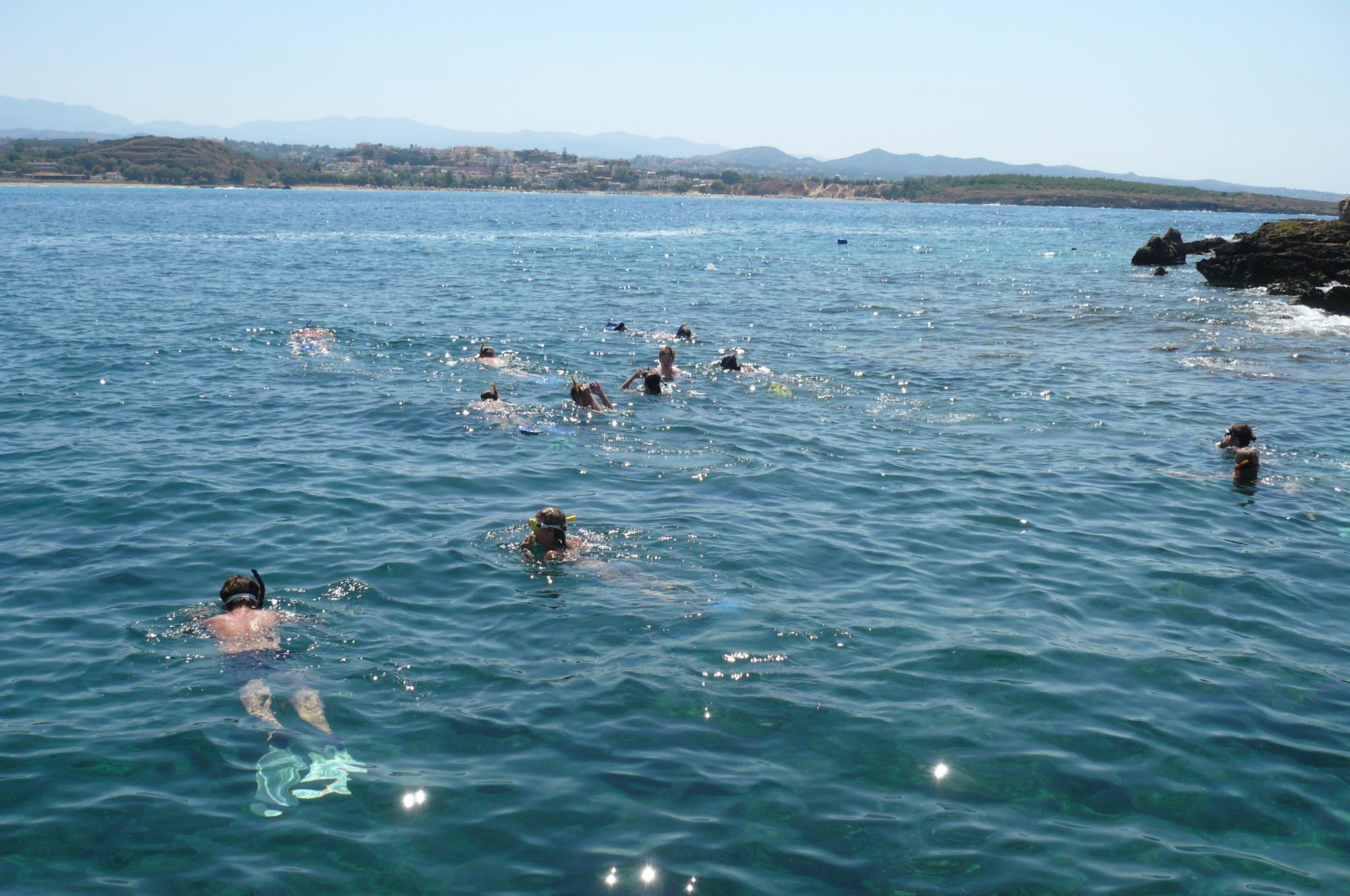 Families swimming in ocean