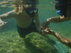 Playing underwater with sea animal