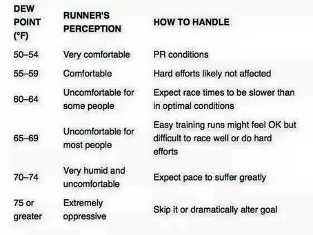 Heat & Humidity: Why it's Harder to Run & How to Survive It