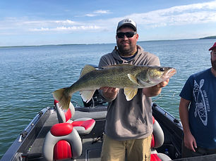 "29.5"" Leech Lake Walleye"