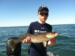"26"" Leech Lake walleye"