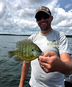 Leech Lake Sunfish