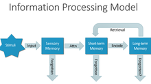 An overview of the Information Processing Model