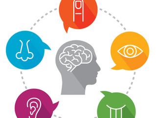 Sensory Input & Sensory Memory