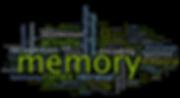 Memory Training Evaluation Learning Brainsight St. Paul Minnesota
