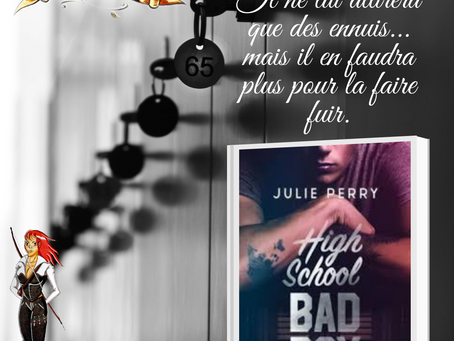 High school bad boy, écrit par Julie Perry