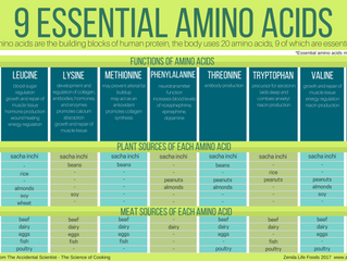 The 9 Essential Amino Acids that must be in our diets for optimum health