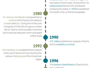 The History of Sacha Inchi consumption
