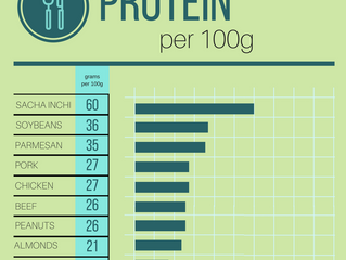 How much Protein is in the food you eat?
