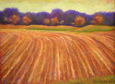 "HARVESTED FIELD, PASTEL ON PAPER, 11""X15"""