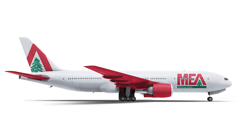 side profile of plane2.png