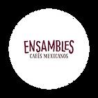 ensambles_circulo.png