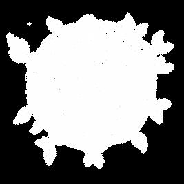 grafico_mundo.png