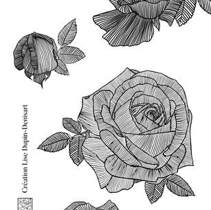 composition de roses