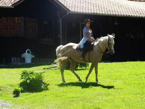 Égua Brenda