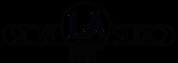 Professional Screenwriter, Screenwriter Ghostwriter, Screenplay Ghostwriter, Story Development Services, Hire a Screenwriter, Screenwriting Services, Ghostwriter