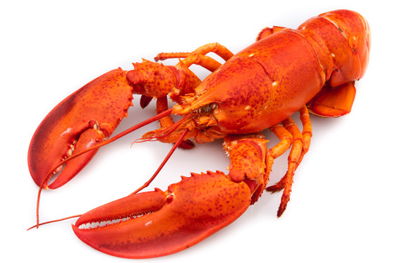 How To Remove Lobster From The Shell