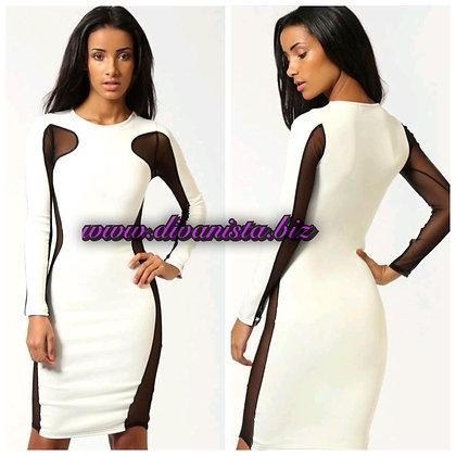 White Long Sleeve Mesh Dress