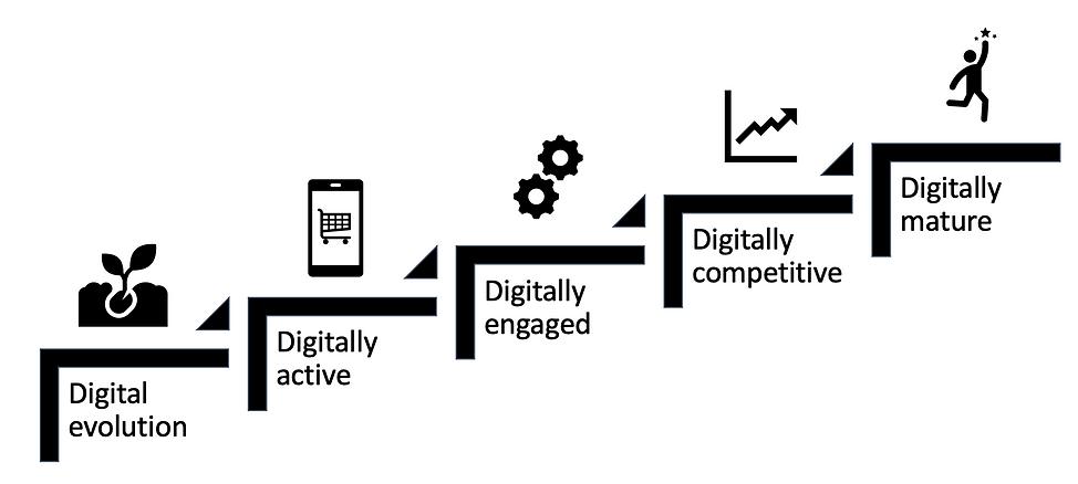 digital evolution.png