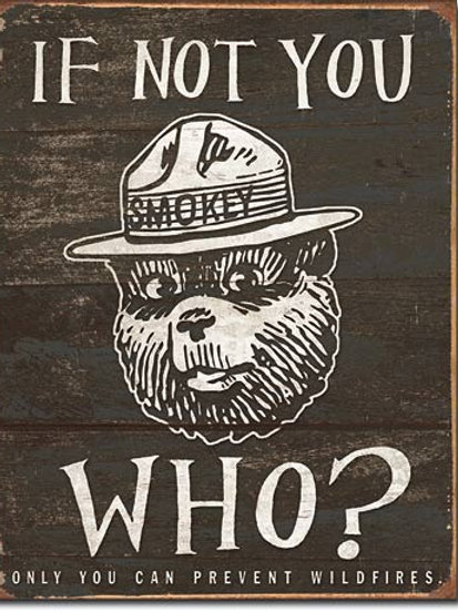 Smokey Bear - If Not You Metal Sign #1878