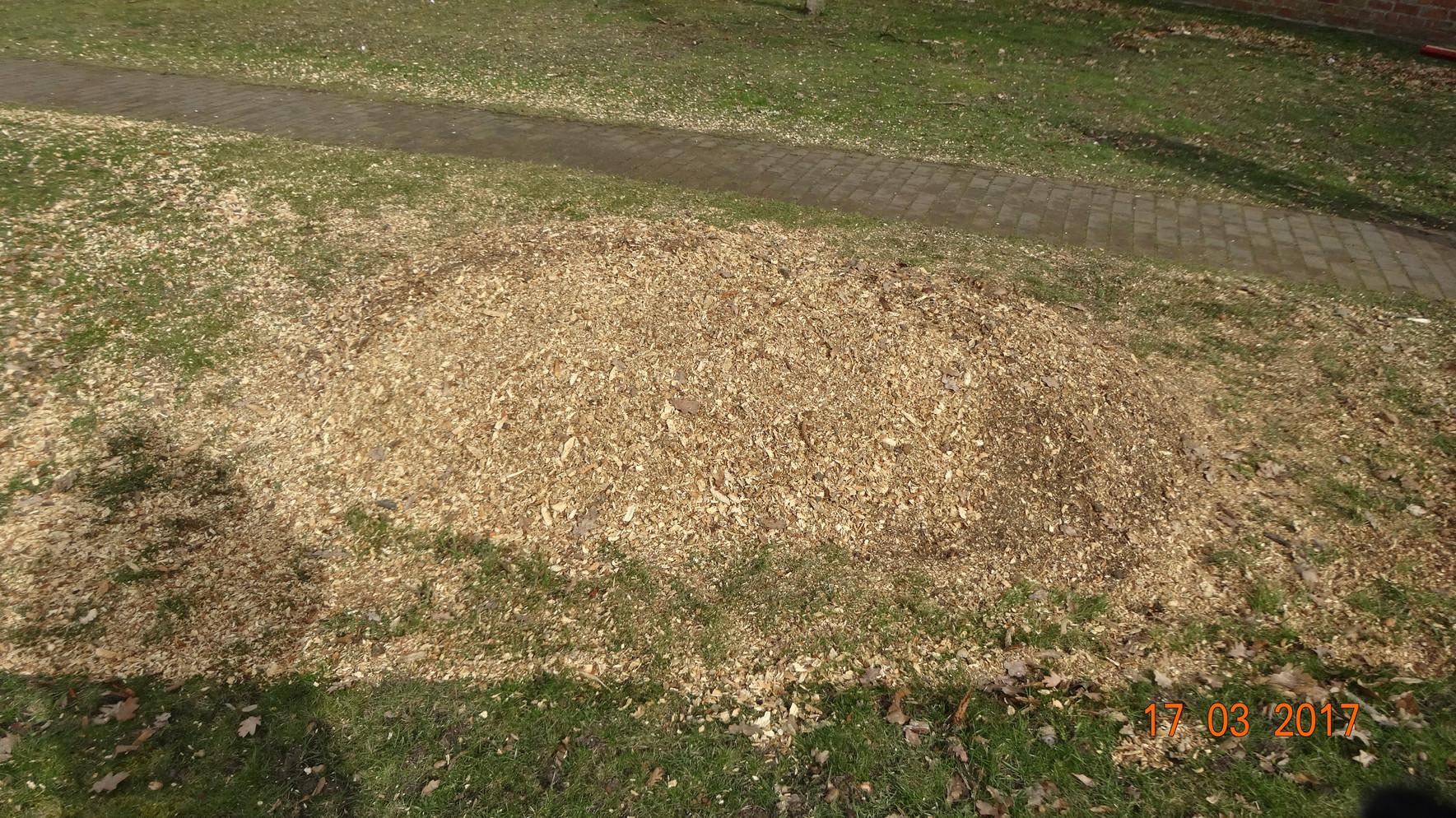 Baumstubbenfräse