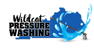 Wildcat Pressure Washing Logo_NEW.png