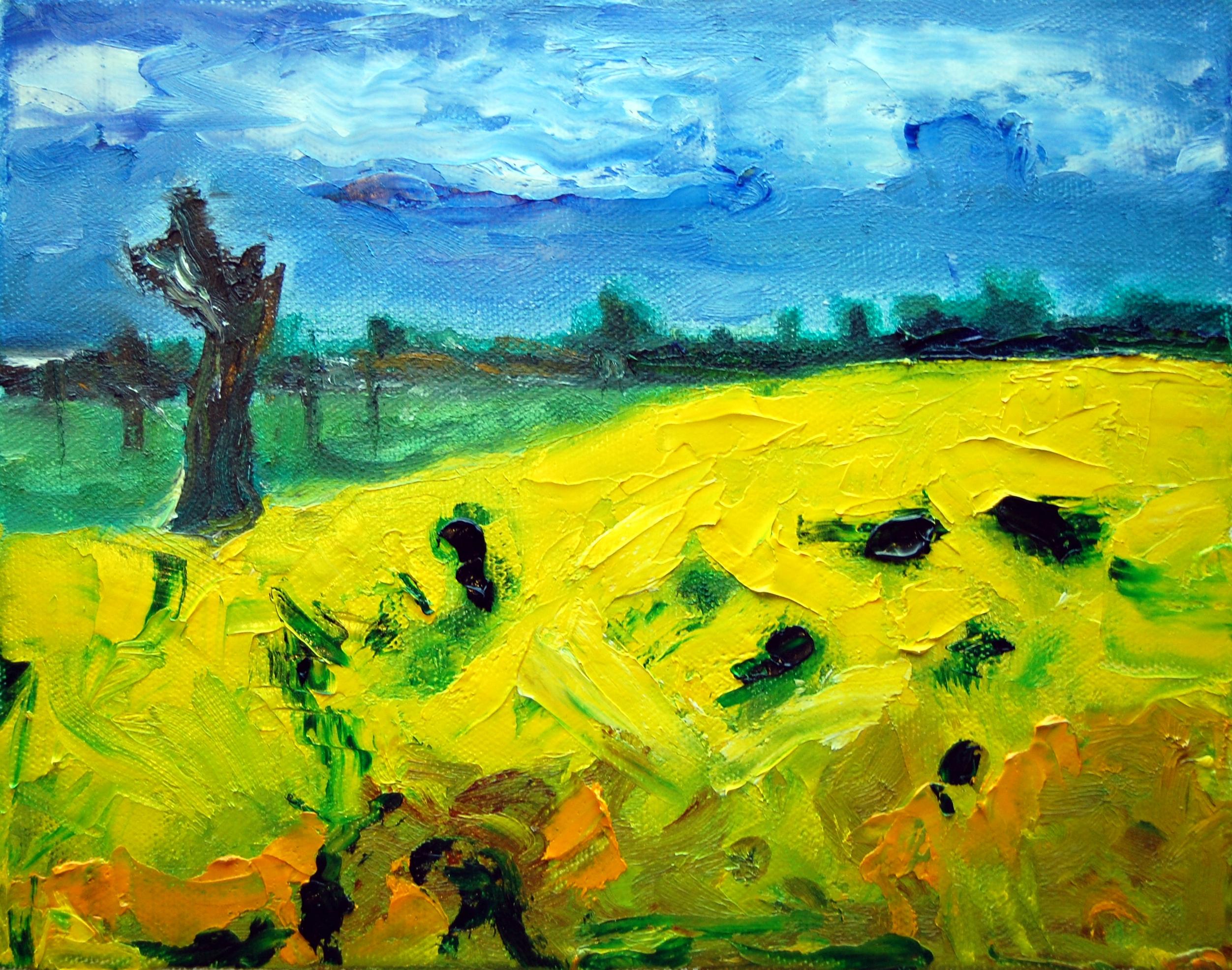 'Rape Field'