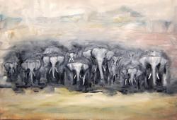 'Herd'