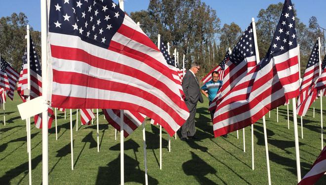 field of flags.JPG
