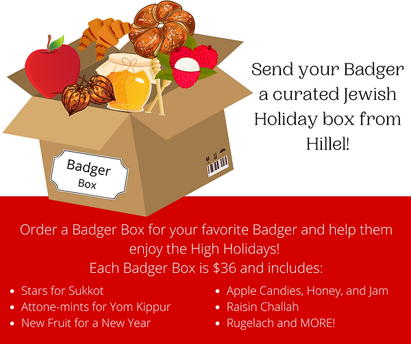 badger Box.png