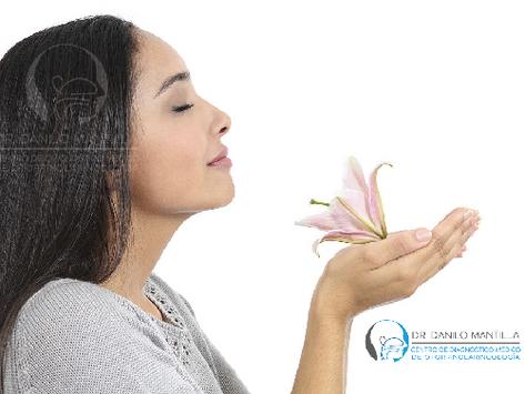 El olfato | Enfermedades y trastornos: Causas, diagnóstico y tratamiento