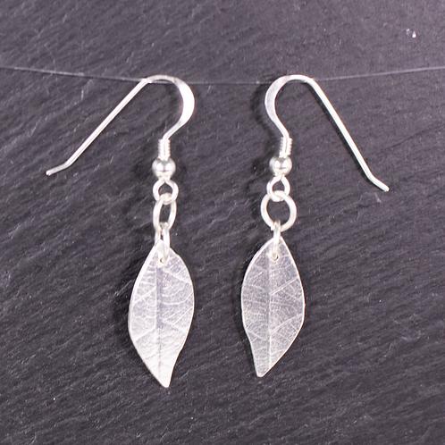 Long silver leaf design earrings on a slate background