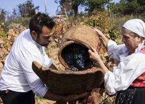 SARDEGNA, tierra del vino