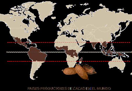 Chocolate│¿Sabias que?