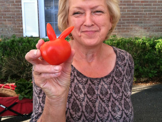 This Week at the Market: 7/16- Tomato Day!