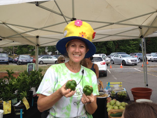 This Week at the Market: 7/23-- Kids' Day!