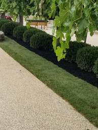 Completed with mulch
